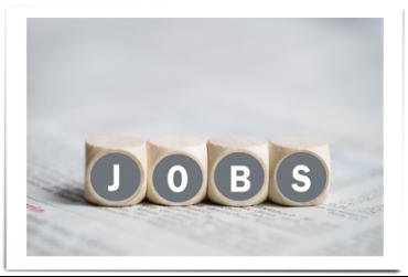 Jobs / Stellenangebote